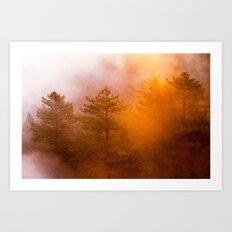 Golden Morning Glory Forest Art Print