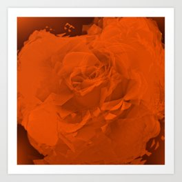 Bloomed Rose Warm Orange Art Print
