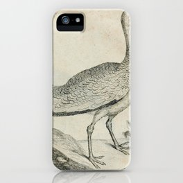001 Trappe (Ger)2 iPhone Case