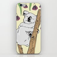koala iPhone & iPod Skins featuring Koala by Madmi