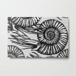 AMMONITE COLLECTION B&W Metal Print