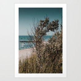 Beach Moment Art Print