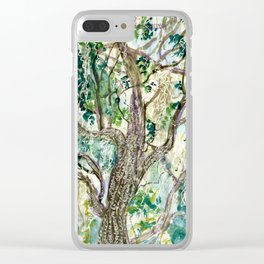 Oak Tree with Spanish Moss Clear iPhone Case