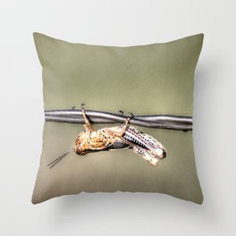 Hang on Baby Friday's Coming Throw Pillow