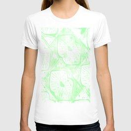 faded irish kisses T-shirt