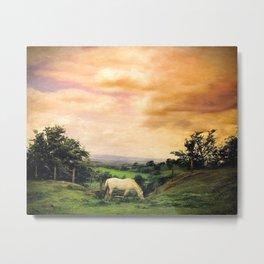 Farmland in Cumbria Metal Print