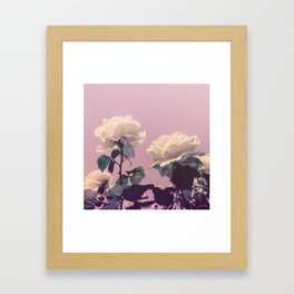 Vintage Spring Pearl White Roses Lavender Sky Framed Art Print