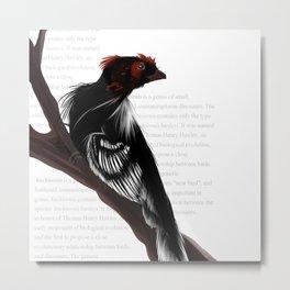 Dinosaur- Anchiornis Metal Print