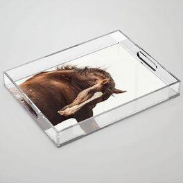 Breeze Acrylic Tray