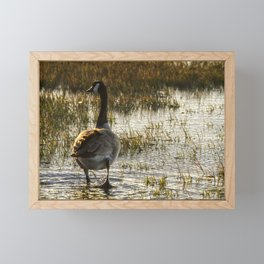 The Golden Goose Framed Mini Art Print