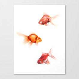 Peces Canvas Print