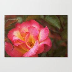 Flower Web Canvas Print
