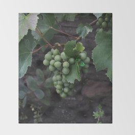 Grapevine Throw Blanket