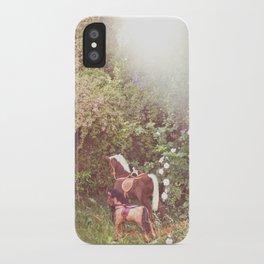 Three little rocking horses iPhone Case