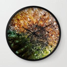 Dandelion Dewdrop Flower Close Wall Clock