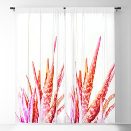 Living Coral Aloe Vera Blackout Curtain