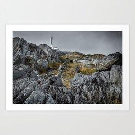Nova Scotia's Rocky Shore Art Print
