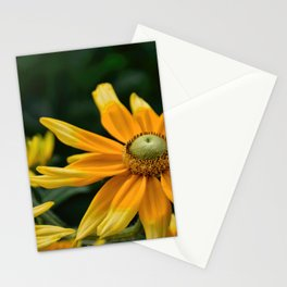Golden Yellow Stationery Cards