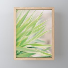 Nature Details | Green Cactus | Fine Art Pastel Print Framed Mini Art Print