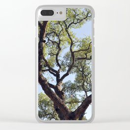 Live Oaks Clear iPhone Case