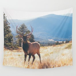 a stare down.  Wall Tapestry