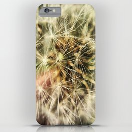 Dandelion Bliss iPhone Case