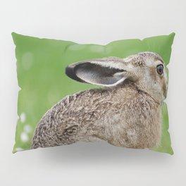 Little rabbit on a meadow Pillow Sham