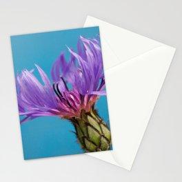 Purple Mountain Cornflower No.2 Stationery Cards