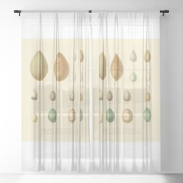 Eggcellent Sheer Curtain
