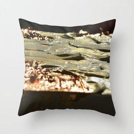 Copper Tilt Throw Pillow