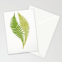 Edward Joseph Lowe - Polypodium Hastaefolium Stationery Cards