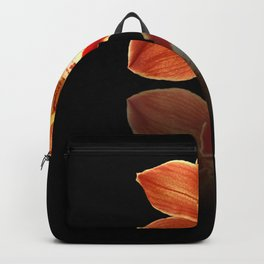 Red Reflection Backpack