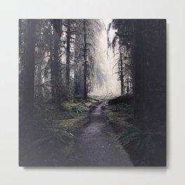 Magical Washington Rainforest Metal Print