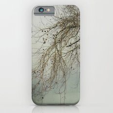 Decorations Slim Case iPhone 6s