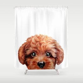 Toy poodle red brown Dog illustration original painting print Shower Curtain