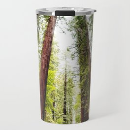 humboldt redwood forest Travel Mug