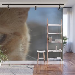 Pocko's Peepers Wall Mural