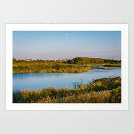 South Cape May Meadows Art Print