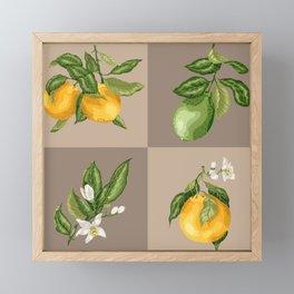 Orange Fruit in Vector Graphic Framed Mini Art Print