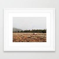 elk Framed Art Prints featuring Elk.  by Joe Greer