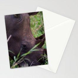 White Rhino in Hluhluwe-Imfolozi Park Stationery Cards