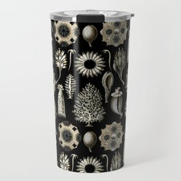 Ernst Haeckel - Scientific Illustration - Calcispongiae Travel Mug