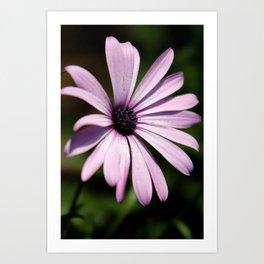 Simple Purple Art Print