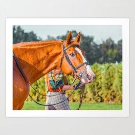 Horse head photo closeup Art Print