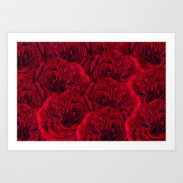 Rouge Garden - Red Roses and Peonies Pattern Art Print