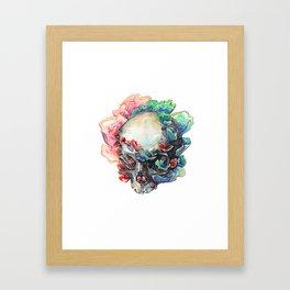 Trametes Versicolor Framed Art Print