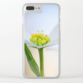 Dogwood 3 Clear iPhone Case