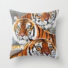 Texas Tiger Trio Throw Pillow