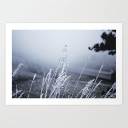 Season – Winter Art Print