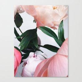 peonies2 Canvas Print